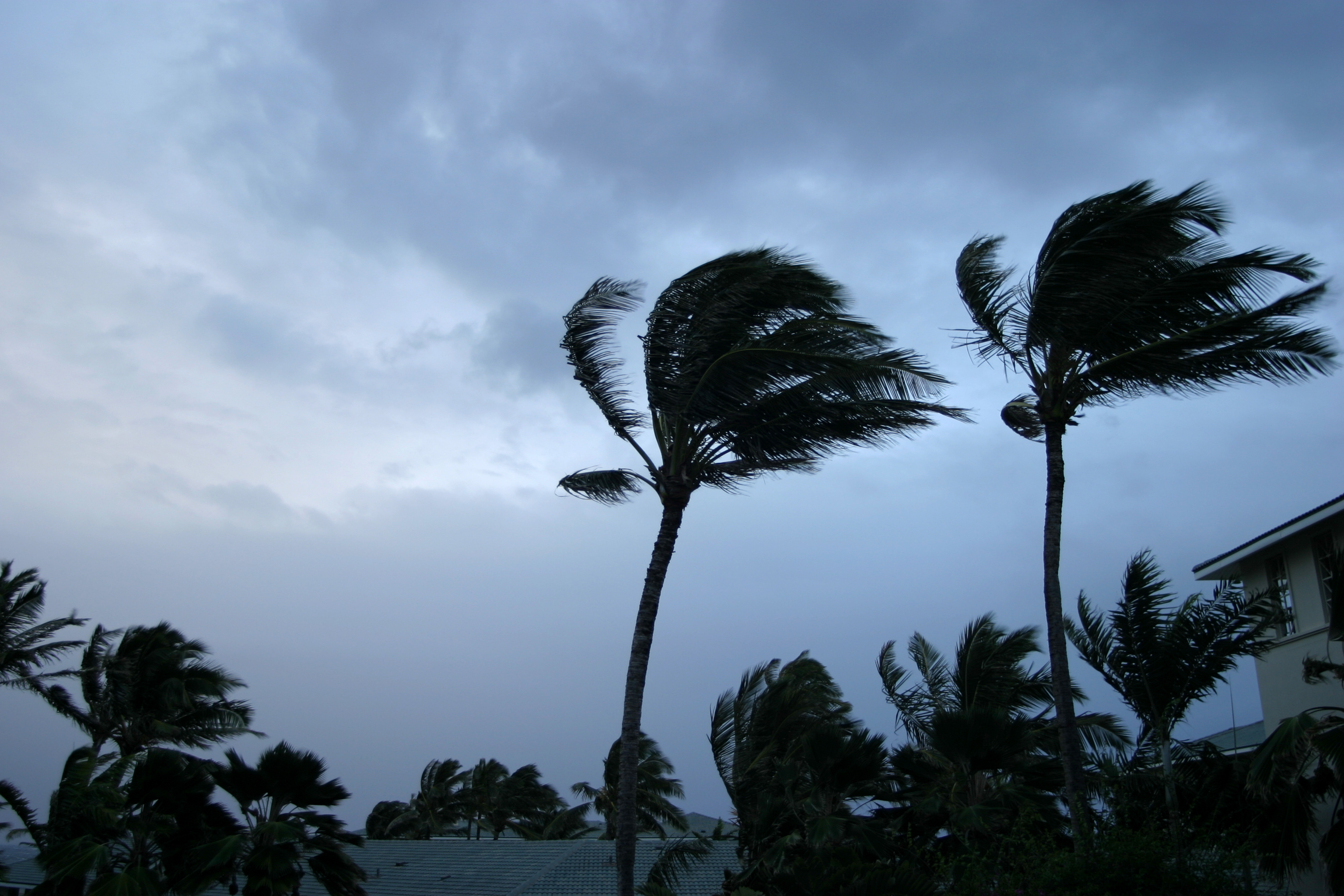 6 Ways to Protect Your Home from a Hurricane on avanteinsurance.com