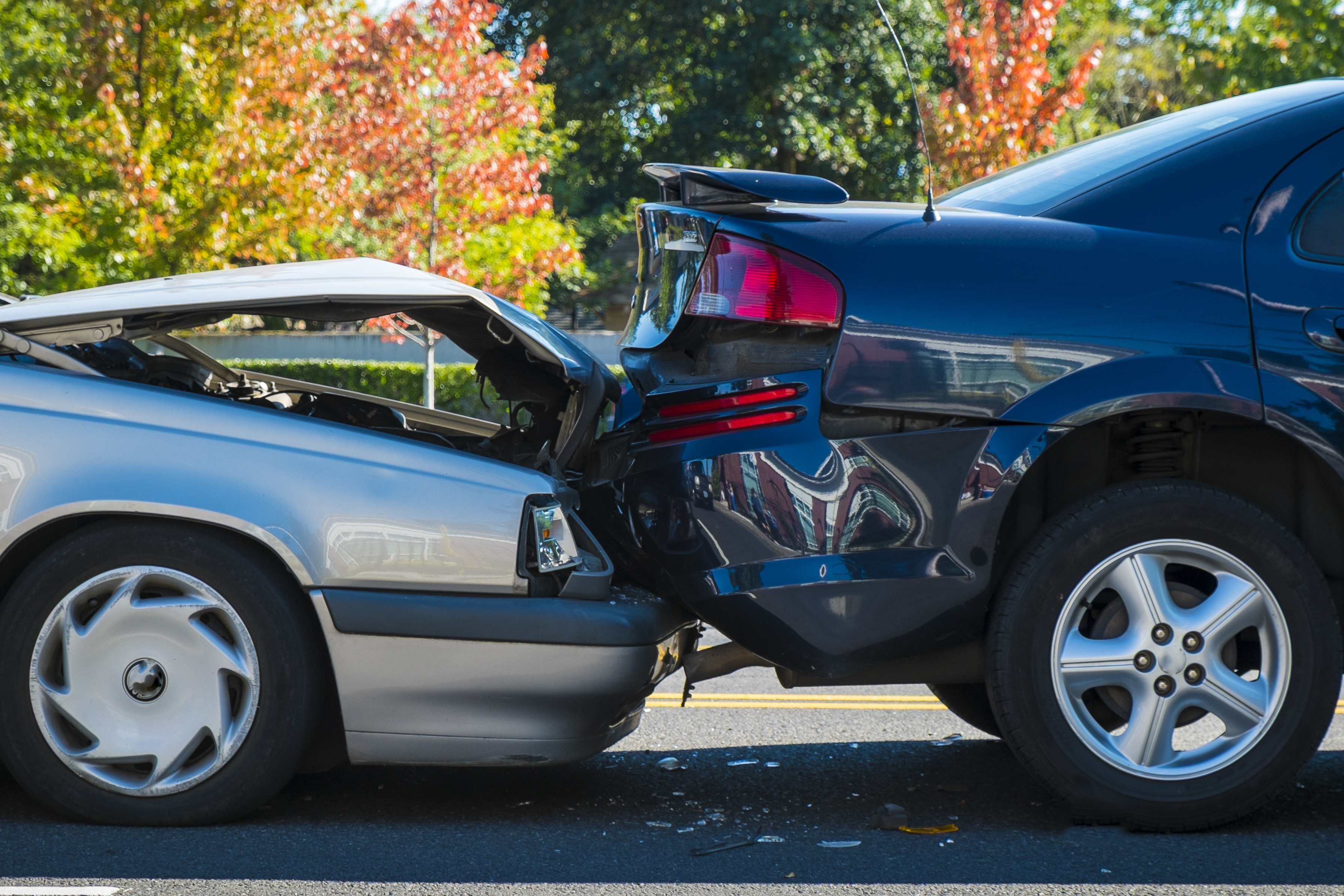 Expensive Assumptions: Uninsured Drivers at Fault and How to Protect Yourself from Them on avanteinsurance.com