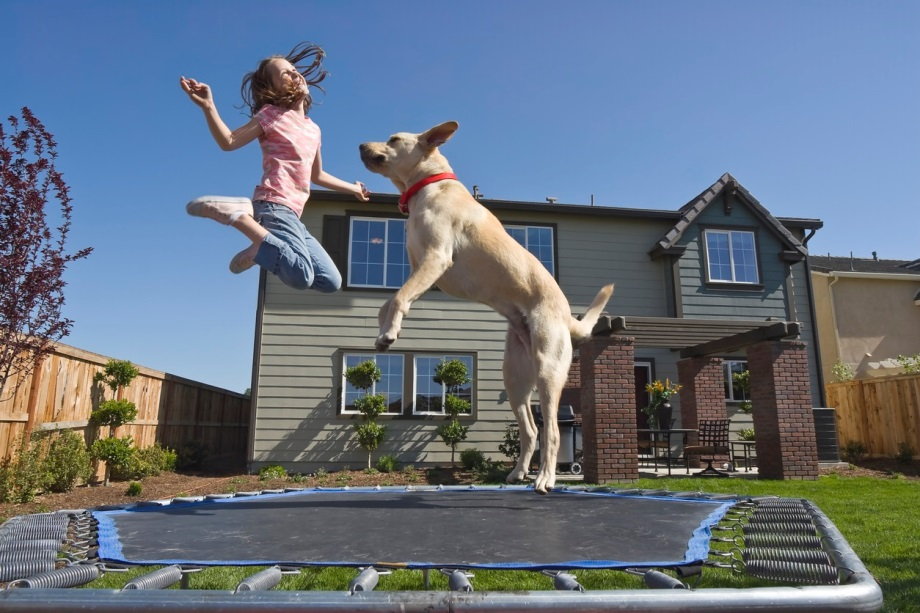 Trampolines, Swimming Pools, and Puppies, Oh My! Do You Know Your Homeowner's Insurance Restrictions?